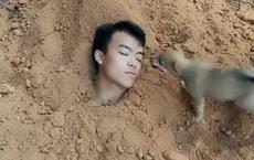 """Tự """"chôn"""" mình xuống đất để thử lòng chó cưng, chàng trai nhận về kết quả rớt nước mắt"""