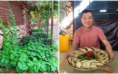 Mê mẩn vườn rau thuần Việt ở Angola, chủ nhân tiết lộ điều nhiều người lầm to khi nhắc đến châu Phi