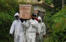 Indonesia đối mặt nguy cơ bùng phát COVID-19 giống Ấn Độ