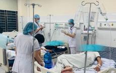 Nhầm rễ cây độc là... nhân sâm, 5 công nhân Hoà Bình ngộ độc rượu ngâm khiến bệnh viện phải kích hoạt Báo động đỏ