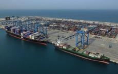 """Đại gia gỗ dăm Trung Quốc tính chuyện làm """"siêu cảng"""" Gành Hào tại Cà Mau"""
