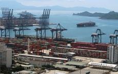 """Cảng biển Trung Quốc """"trúng đòn"""": Thương mại đình trệ, cửa hàng tại Âu-Mỹ """"không tránh khỏi đạn lạc"""""""