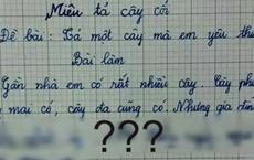 Bài văn tả cây của học sinh lớp 3: Cây kiếm ra tiền, khiến mẹ khổ sở, đọc tên cây mà nhiều người lớn sững sờ