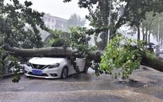 """Trung Quốc mưa lớn: Trịnh Châu thất thủ trong nước lũ, tham vọng """"thành phố bọt biển"""" kiểu mẫu đã sụp đổ?"""