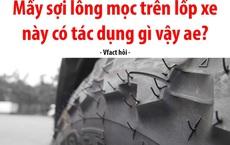 Phần 'lông' mọc trên lốp xe có tác dụng gì, phải chăng là để ngồi bứt cho vui trong mùa giãn cách?