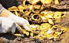 Lão nông đào được một chiếc nồi lớn liền đập vỡ để lấy 20 kg vàng, chuyên gia 'thót tim': Ông đã phạm sai lầm lớn!