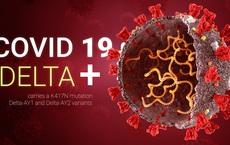 Vì sao Covid-19 biến thể Delta bùng phát mạnh mẽ tại 132 quốc gia và khu vực: 9 điều cần biết