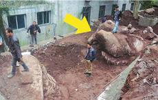 Đào đất tìm thấy tảng đá nặng 20 tấn, người công nhân hốt hoảng: Lại đây xem nó có hình gì!