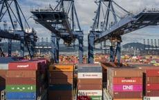 Chuỗi cung ứng toàn cầu đối mặt với thảm hoạ mới: Cảng lớn nhất nhì Trung Quốc bất ngờ dừng hoạt động