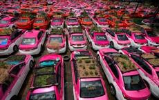 24h qua ảnh: Người dân trồng rau trên nóc xe taxi ở Thái Lan