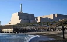 Bê tông của một nhà máy điện hạt nhân bị bỏ hoang ở Nhật Bản trở nên cứng hơn gấp 3 lần, và một chất hiếm được tìm thấy sau khi cắt