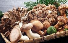 Thường xuyên ăn 8 loại thực phẩm này giúp ngăn ngừa ung thư