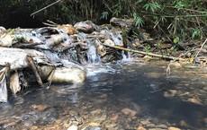 Công ty nước sạch sông Đà chôn lấp cát lẫn dầu thải không đúng quy định