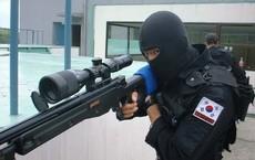 Biên giới Hàn-Triều: Hàn Quốc dồn dập triển khai lính bắn tỉa, drone ảnh nhiệt, quyết diệt sạch... lợn rừng