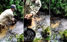 Hàng vạn dân Hà Nội dùng nước không đảm bảo trong 1 tuần qua: Lãnh đạo nào, cơ quan nào chịu trách nhiệm?