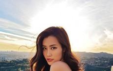 Nhóm trộm biệt thự của ca sĩ Nhật Kim Anh còn đột nhập nhà ca sĩ Đông Nhi