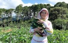 Lý Nhã Kỳ bỏ trăm tỉ mua 50 hecta đất ở Đà Lạt để trồng rau, nuôi gà?