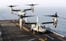 Mỹ, Iran tiêu diệt UAV của nhau: Lò lửa chiến tranh bùng phát bất cứ lúc nào!