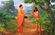 Đang định tự tử, người đàn ông bị Đức Phật ngăn lại và làm nên điều kỳ diệu chỉ sau 7 ngày