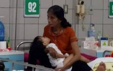 Hà Tĩnh: Rắn hổ mang bò vào nhà, cắn bé gái 3 tuổi nguy kịch