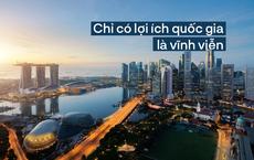 """""""Con tôm độc"""" Singapore và 3 bài học"""
