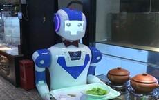 Người trẻ không muốn làm bồi bàn, các nhà hàng Trung Quốc chỉ còn biết hi vọng vào... robot