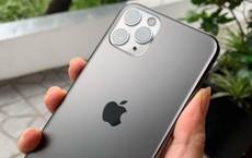 Bất ngờ giá iPhone 11, iPhone 11 Pro Max sau chưa đầy 3 ngày về Việt Nam