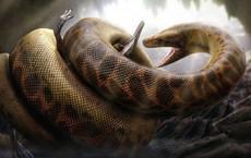 Trăn Anaconda chỉ là loài vật tí hon bởi trăn khổng lồ Titanoboa có thể nuốt chửng cả khủng long