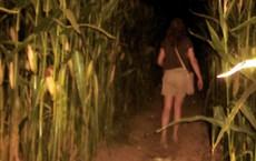 Con gái 16 tuổi thường xuyên lẻn ra ruộng ngô vào nửa đêm, bố mẹ theo dõi thì phát hiện sự thật đau lòng