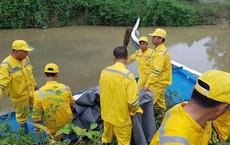 Chuyên gia xuyên đêm xử lý ô nhiễm đầu nguồn nước sông Đà