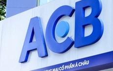 Một công ty vốn chỉ 5 tỷ đi vay nước ngoài 1.400 tỷ đồng với lãi suất 'cắt cổ' 20%/năm để mua 60 triệu cổ phiếu ACB?