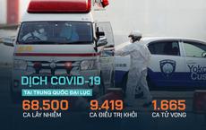 """TQ nhận """"song hỷ"""": Ca nhiễm mới Covid-19 ngoài Hồ Bắc giảm 12 ngày liên tiếp; xuất viện trên 1.000 người/ngày"""