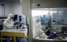 Đột phá trong nghiên cứu virus corona: Các nhà khoa học Mỹ tạo thành công bản đồ phân tử 3D của COVID-19
