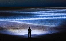 """Cuộc """"trỗi dậy"""" vĩ đại dưới lòng đại dương trong đêm tối: Lớn nhất hành tinh nhưng không ai biết"""