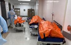 """Hình ảnh đau thương tại tâm dịch New York: Thi thể nạn nhân COVID-19 """"xếp hàng"""" chật hành lang bệnh viện"""