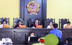 Bị cáo vụ gian lận thi cử tại Sơn La bị tuyên từ án treo đến hơn 20 năm tù, bác đề nghị của cựu trưởng phòng khảo thí xin lại 1 tỷ