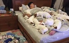 Anh chồng kêu khổ vì vợ cứ nằng nặc đòi nuôi 2 con chó, 3 năm sau kết cục xảy đến với anh khiến ai nấy câm nín