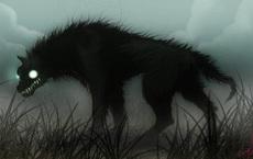 """Hình ảnh hiếm hoi của """"ma chó"""" bí ẩn nhất vùng rừng rậm Amazon"""