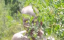 """Xem lại ảnh chụp selfie, bé gái 12 tuổi """"thất kinh bạt vía"""" khi thấy bóng dáng sau bụi cây, nhờ đó mà thoát khỏi kẻ biến thái chỉ cách vài bước chân"""