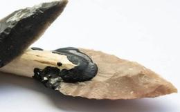 Loài người thuở sơ khai đã biết cách sử dụng lửa để rèn công cụ bằng đá từ cách đây 300.000 năm trước?
