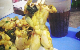 Đang đi ăn, chàng trai gắp ra khỏi đĩa một chú ếch xào cơ bắp cuồn cuộn với hình dáng ai thấy cũng phải giật mình