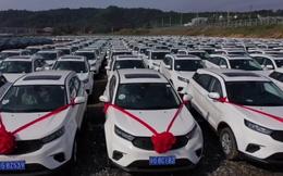 Làm ăn phát tài, công ty chi gần 1.800 tỷ đồng mua hơn 4.000 xe hơi tặng nhân viên