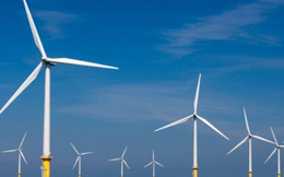 Những nhà đầu tư điện gió hàng đầu Việt Nam