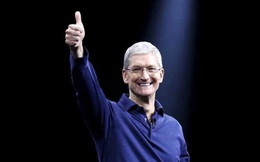 Câu hỏi tuyển dụng của Apple: Có 3 hộp bóng bị đánh nhãn sai, ghi lại nhãn từng hộp sao cho đúng?