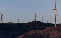 Doanh nhân xin làm điện gió khắp cả nước, bán lại hai dự án cho người Thái thu về 400 tỷ đồng