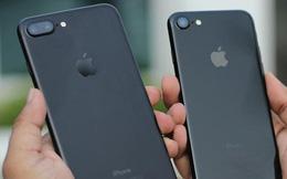 iPhone 7 giá từ 5,5 triệu, iPhone 8 rớt giá còn 7,5 triệu đồng