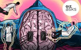 Công nghệ cấy ghép não có giúp con người điều khiển được đồ vật bằng suy nghĩ?