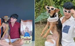 Được thanh niên say xỉn bế nhầm về nhà và nhận nuôi, chú chó hoang một bước thoát cảnh lang thang trở thành hiện tượng mạng