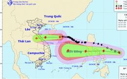 Bão số 8 giật cấp 12 còn cách quần đảo Hoàng Sa khoảng 100km