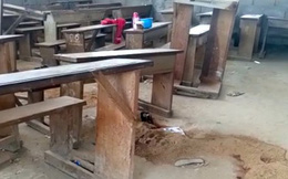 Tấn công trường học ở Cameroon, 6 trẻ nhỏ thiệt mạng